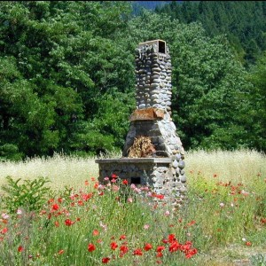 Wildflower Fireplace