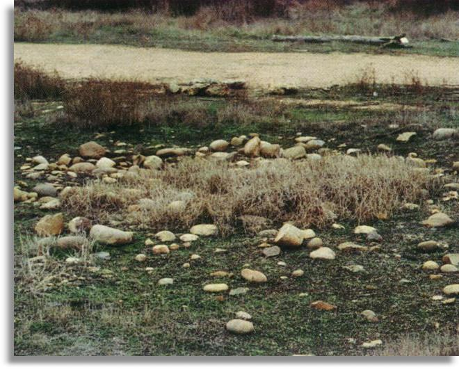 Dry Vernal Pool showing its boulder configuration